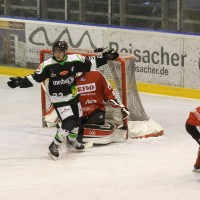 06-11-2015_Memmingen_Eishockey_Randale_Indians_ECDC_Hoechstadt_Polizei_Fuchs_new-facts-eu0023