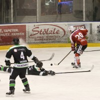 06-11-2015_Memmingen_Eishockey_Randale_Indians_ECDC_Hoechstadt_Polizei_Fuchs_new-facts-eu0040