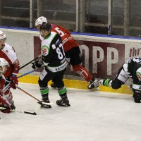 06-11-2015_Memmingen_Eishockey_Randale_Indians_ECDC_Hoechstadt_Polizei_Fuchs_new-facts-eu0047