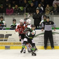 06-11-2015_Memmingen_Eishockey_Randale_Indians_ECDC_Hoechstadt_Polizei_Fuchs_new-facts-eu0066