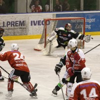 06-11-2015_Memmingen_Eishockey_Randale_Indians_ECDC_Hoechstadt_Polizei_Fuchs_new-facts-eu0076