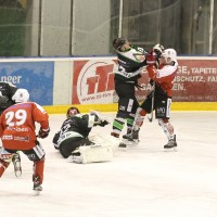 06-11-2015_Memmingen_Eishockey_Randale_Indians_ECDC_Hoechstadt_Polizei_Fuchs_new-facts-eu0077