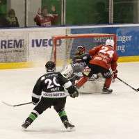 06-11-2015_Memmingen_Eishockey_Randale_Indians_ECDC_Hoechstadt_Polizei_Fuchs_new-facts-eu0082