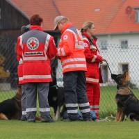 31-10-2015_Bayern_Oberallgaeu_BRK_Rettungshundestaffel_Eignungstest_Kuehnl_new-facts-eu006