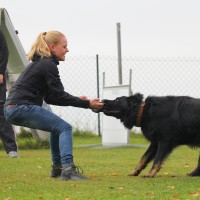 31-10-2015_Bayern_Oberallgaeu_BRK_Rettungshundestaffel_Eignungstest_Kuehnl_new-facts-eu026