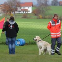 31-10-2015_Bayern_Oberallgaeu_BRK_Rettungshundestaffel_Eignungstest_Kuehnl_new-facts-eu036