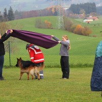 31-10-2015_Bayern_Oberallgaeu_BRK_Rettungshundestaffel_Eignungstest_Kuehnl_new-facts-eu038