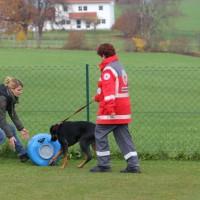 31-10-2015_Bayern_Oberallgaeu_BRK_Rettungshundestaffel_Eignungstest_Kuehnl_new-facts-eu046