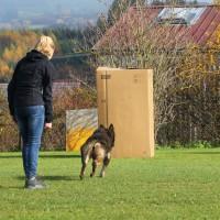 31-10-2015_Bayern_Oberallgaeu_BRK_Rettungshundestaffel_Eignungstest_Kuehnl_new-facts-eu071