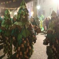05-02-201_Biberach_Ochsenhausen_Nachtumzug_Poeppel_new-facts-eu_mm-zeitung-online_124