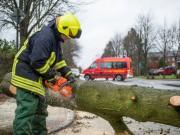 Unwetter Sturm Motorsäge Feuerwehr