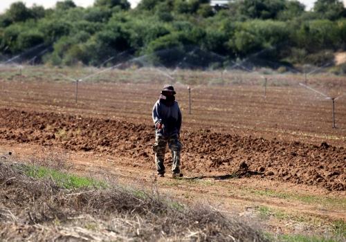 Feldarbeiter in Israel, über dts Nachrichtenagentur
