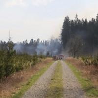 04-04-2016_Biberach_Tannheim_Rot_Waldbrand_Feuerwehr_Poppel20160404_0001