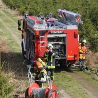 04-04-2016_Biberach_Tannheim_Rot_Waldbrand_Feuerwehr_Poppel20160404_0017