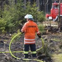 04-04-2016_Biberach_Tannheim_Rot_Waldbrand_Feuerwehr_Poppel20160404_0039