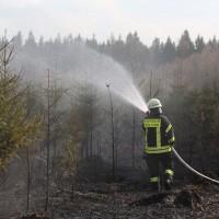 04-04-2016_Biberach_Tannheim_Rot_Waldbrand_Feuerwehr_Poppel20160404_0044