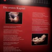 17-05-2016_Koerperwelten_Ravensburg_Gunther-von-Hagen_Ausstellung_Poeppel_0048