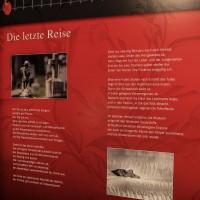 17-05-2016_Koerperwelten_Ravensburg_Gunther-von-Hagen_Ausstellung_Poeppel_0074