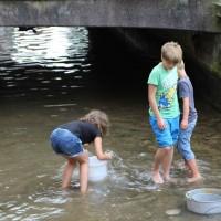 23-07-2016_Memminger-Fischertag-2016_Bach-Schmotz_Poeppel_0075