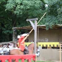 24-07-2016_Wallenstein-Sommer-2016_Reiterspiele_Poeppel20160724_0085