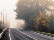 Nebel, Laub, Herbst,