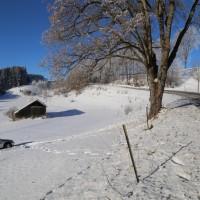 Unfall ST2055 Kaufbeuren Friesenried Oberbeurer Steige Winter (5)
