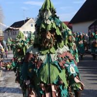 20170211_Biberach_Tannheim_Narrensprung_Daaschora_Weibla_Poeppel_0292