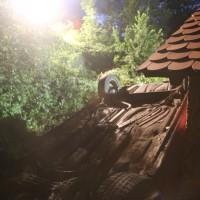 20170625_B32_Amtzell_Rotheidlen_Unfall_Feuerwehr_Poeppel_0007