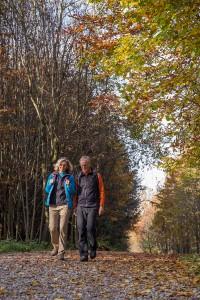Viele Touren gibt es beim Unterallgäuer Wanderherbst - auch rund um Bad Grönenbach. Foto: Kur- und Gästeinformation Bad Grönenbach