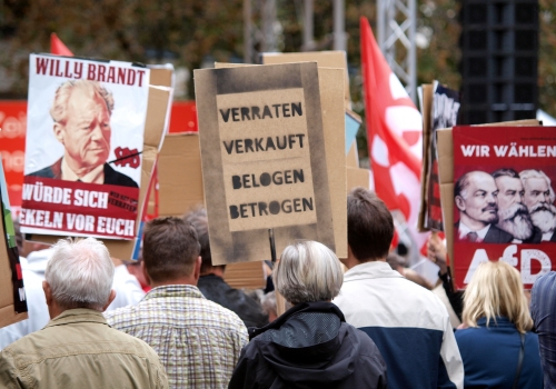 Protest von AfD-Sympathisanten, über dts Nachrichtenagentur