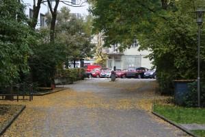 2017-10-21_Muenchen_Rosenheimerplatz_Messerstecher_Polizei_Poeppel-0029