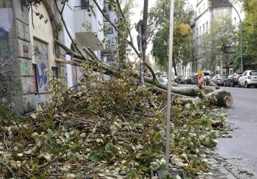 Schäden nach Sturmtief