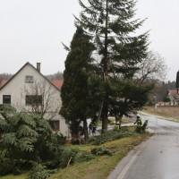 2018-01-04_Ravensburg_Bodenegg_Baum-droht-Haus_Feuerwehr_Unwetter_Poeppel_0012