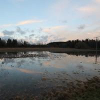 2018-01-05_Ravensbrug_Wangen_Kempten_Hochwasser_Feuerwehr_Poeppel_0022