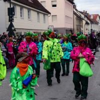 2018-02-04_Altenstadt-Iller_Faschingsumzug_2018_Poeppel_0251