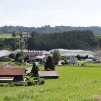 2019-08-09_Unterallgaeu_Groenenach-Tal_Miclhbetrieb_Landwirtschaft_Tierschutz_Polizei_Durchsuchung_Poeppel_0017