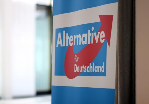 Alternative für Deutschland (AfD), über dts Nachrichtenagentur