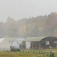 2019-10-19_BWTEX-2019_Stetten_Terror_Uebung_Polizei_Bundeswehr_Poeppel_2019-10-19_BWTEX-2019_Stetten_Terror_Uebung_Polizei_Bundeswehr_Poeppel922