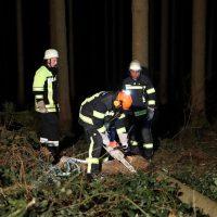 2020-02-16_Unfall_Oberschönegg_Weinried_MN8_PKW_Wald (11)