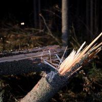 2020-02-16_Unfall_Oberschönegg_Weinried_MN8_PKW_Wald (5)