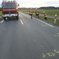 2020-02-16_biberach_Tannheim_Egelsee_L300_Motorrad-Unfall_Feuerwehr_IMG_6220