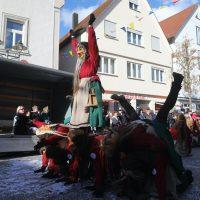 2020-02-24_Bad-Wurzach_Rosenmontagsumzug_AO0A0050