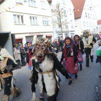 2020-02-24_Bad-Wurzach_Rosenmontagsumzug_AO0A9816