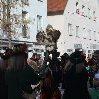 2020-02-24_Bad-Wurzach_Rosenmontagsumzug_AO0A9995