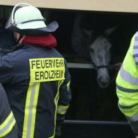 2020-03-10_A7_Dettingen_Berkheim_Unfall_Pferdetransporter_Feuerwehr_IMG_6365