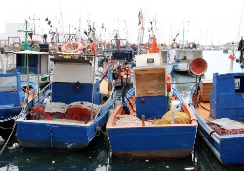 Schiffe in einem Hafen, über dts Nachrichtenagentur